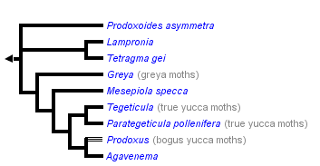 taxon links